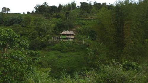 Negros -Bacolod-Savador-San Carlos (32)