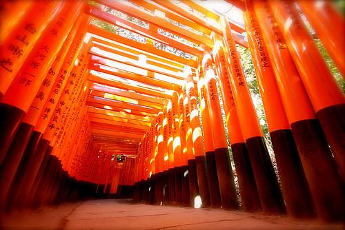 Хрупкая красота Японии japan17