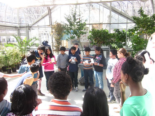 Rock to Apple Earth lesson in the Greenhouse