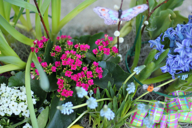 flowers=spring