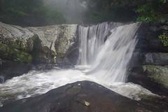 Sanje Waterfall, Udzungwa National Park