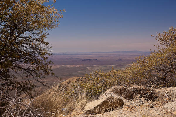 View from Kitt Peak