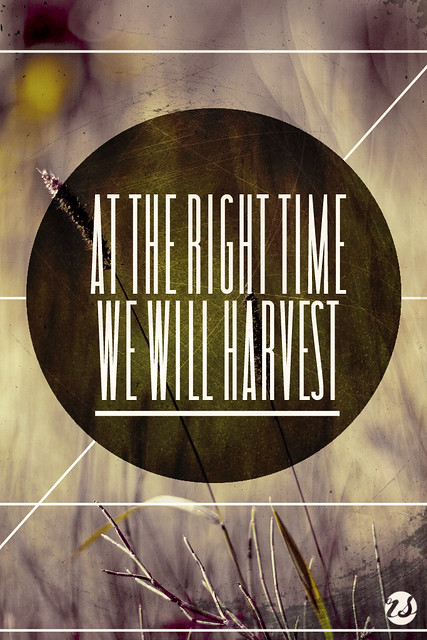 We Will Harvest
