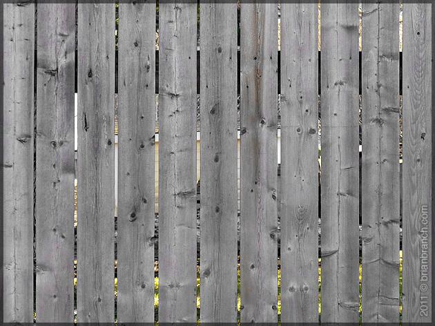 P1140845_fence