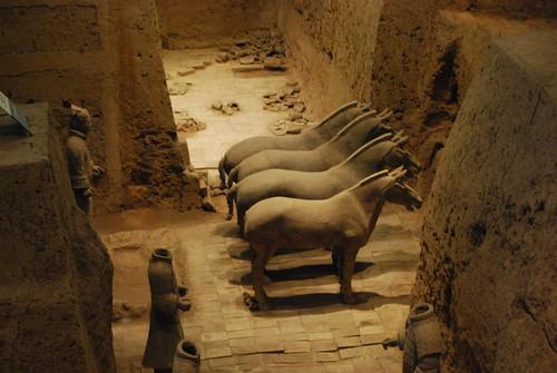Vier Pferde der Terrakottaarmee auf den Boden, der mit Tonziegeln gepflastert ist.