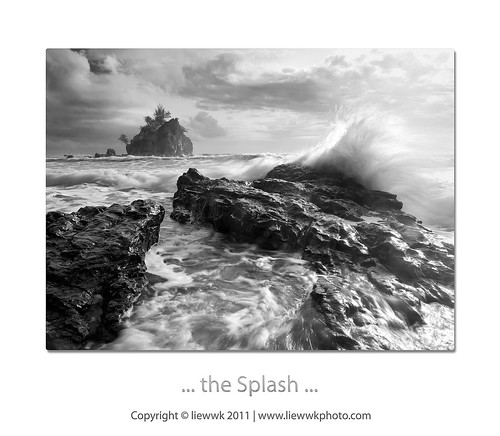 ... the Splash ...