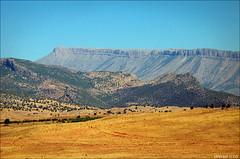 Govend Mountain (Shivan Sito) Tags: summer mountain erbil kurdistan arbil sherwan hewler hawler govend shivansito