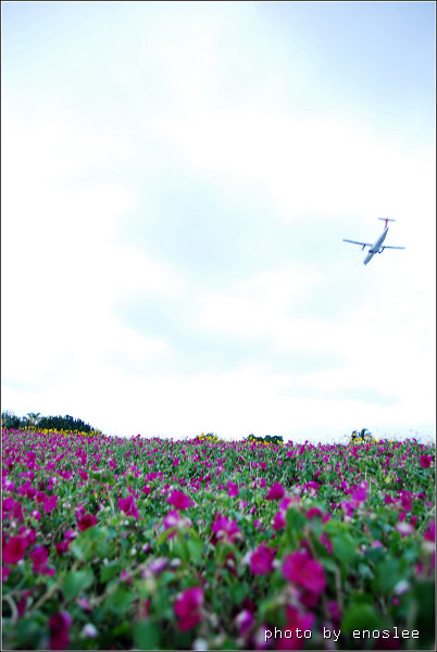 2遊台北花博_179