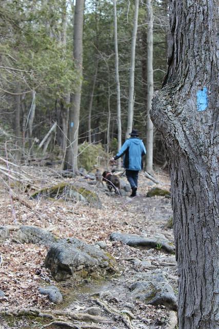 Jones Falls Mini-hike - Blazed