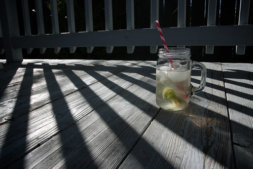 gin + ginger ale + lime