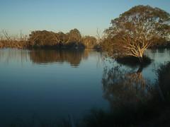 Darling R near Lk Pamamaroo (AnnieRivers63) Tags: lake flood outback woolshed menindee kinchega pamamaroo