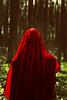 Iscariot 3 (paulsnyder90) Tags: trees red nature water photoshop dark easter woods veil cross mud disturbing betrayal judas iscariot judasiscariot brookeshaden