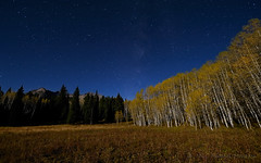Blue-tiful Kebler Pass (Fort Photo) Tags: longexposure blue autumn mountains fall nature night forest dark stars landscape star evening nikon colorado nocturnal scenic meadow astrophotography co moonlight astronomy bluehour aspen nocturne starry milkyway kebler widefield keblerpass nikon1735 d700