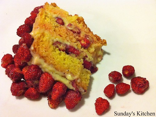 Torta fragolina / Wild strawberries cake
