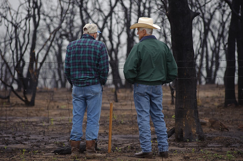 While a wildfire can seem immediately devastating, trained NRCS personnel can help landowners apply conservation practices that will reduce erosion and promote plant health to facilitate range recovery.