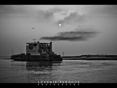 Sooner or later, everyone has to be in the Last Ferry (Shabbir Ferdous) Tags: light sky people bw cloud sun white black reflection bird ferry river flying photographer shot district bangladesh padma bangladeshi ef50mmf14usm rajbari paturia biwtc shabbirferdous canoneos1dmarkiv dauladia bangladeshinlandwatertransportcorporation wwwshabbirferdouscom shabbirferdouscom