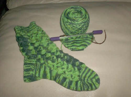 Crocodilian Socks - Sock #2 Toe
