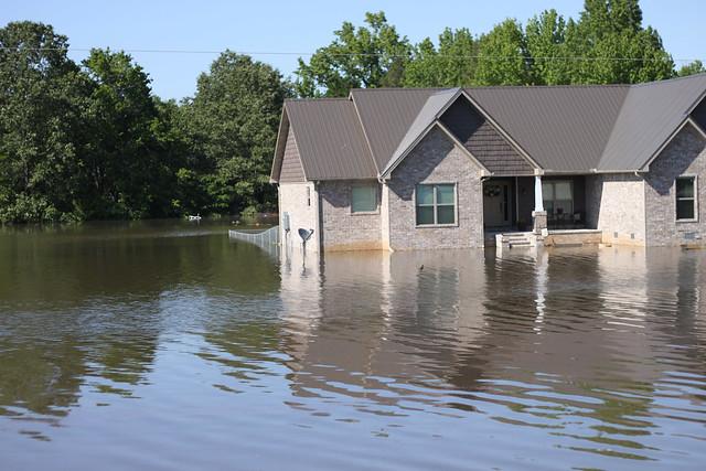 flood 010