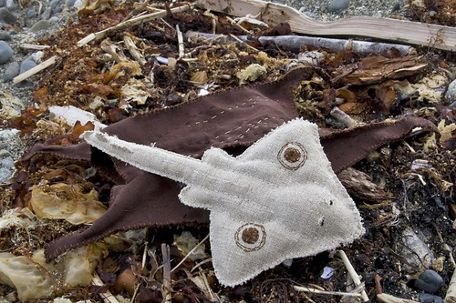 Mermaid's Purse & Baby Skate