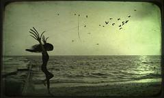 I'm afraid of dreaming... (Mehrnoosh Jalil) Tags: از به من تو یک ترس کن نابود دریا پرواز ماهی فرار رویا اینجا تقدیم رویای زشت دلهره کابوس احمق مهرنوش