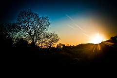 Sunset (Umbreen Hafeez) Tags: blue sunset sky sun tree silhouette set lens landscape scotland flare borders thisphotorocks