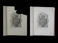 Restauracion Camacho Injerto 1 (CAMACHO: Restauración y Encuadernación de libros) Tags: papel restauración camacho injertos documentográfico
