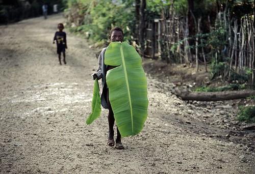 Man leaf