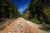 """The Road Less Traveled"" (eleven12design) Tags: travel blue trees summer sky mountains clouds colorado rocks greg 4x4 path rocky adventure dirt 4wheeling offroading steep rolfes"