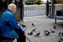 Pigeon Invasion (fooby1) Tags: road city blue people man birds canon bench newcastle lens photography eos 50mm prime focus waiting bokeh pigeon seat tyne northumberland busy walkway fixed af f18 length railings cramped ef upon fifty nifty focal 500d 2011 mk1