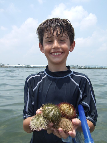 Sea urchin collector Trevor