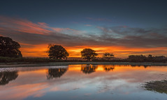 That Dawn And Moon Moment (nicklucas2) Tags: newforest dawn landscape nature reflection pond mogshade cloud sunrise colour autumn sky moon