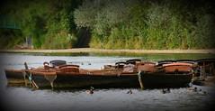 IMG_0283 (LincolnWarrior) Tags: cleethorpes rowingboat boatinglake