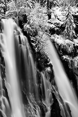 Like an Oreo Cookie (jeandayphotography.com) Tags: california ca trees winter bw snow ice water creek forest waterfall cascades norcal february intimate cascaderange 2011 jday mcarthurburneyfalls icesickles jeanday mcarthurburneyfallsmemorialsp