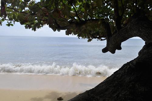 mamangal beach, catanduanes