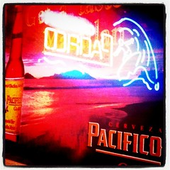 oɔıɟıɔɐd )\_ (TahoeSunsets) Tags: sign square reflected squareformat neonsign cervesa lomofi pacfico iphoneography instagramapp uploaded:by=instagram