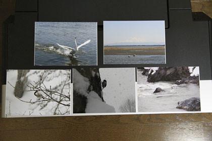 エプソンの写真用紙 2LとPX-5V