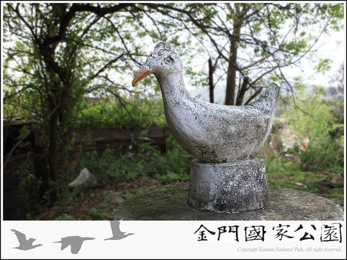 烈嶼黃厝聚落型白雞.jpg