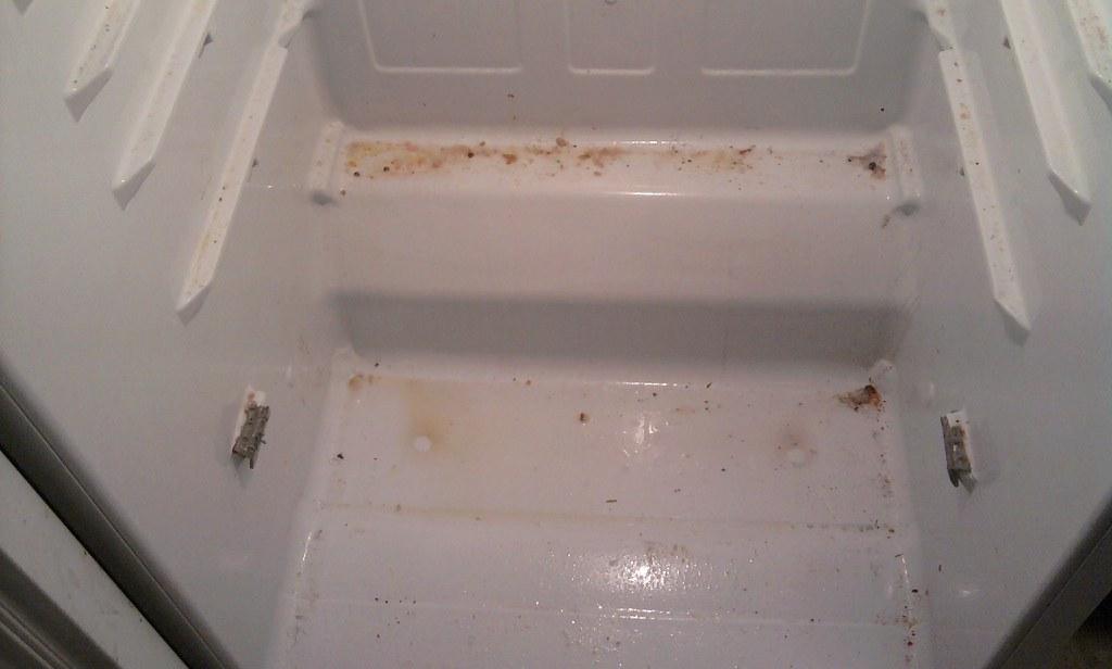 Before Photo - Refrigerator Interior