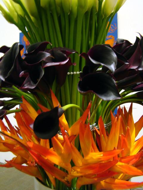 DSC05735 Paul Robertson Floral Design