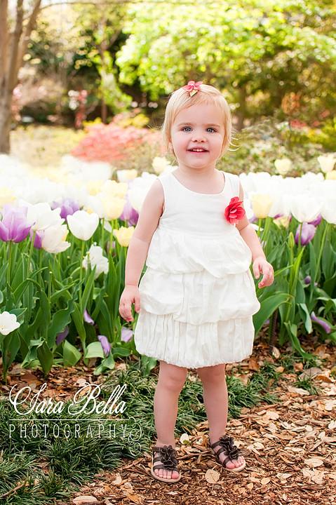 3-19-2011 Sawyer Tulips (7) copyweb