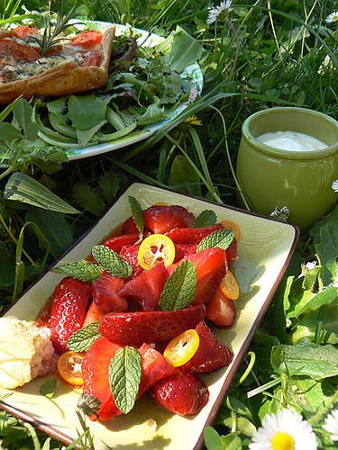 déjeuner sur l'herbe 1.jpg