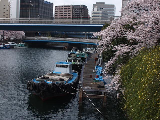 sakuragi-cho