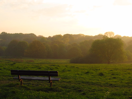 Early Morning on Hampstead Heath