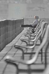 Nuevo rumbo (Joaquim F. P.) Tags: puerto paseo espigón robado chica pensativa nikon catalunya tarragona jfp cataluña cambrils costadorada salou costadaurada port mediterranean goldencoast gente people personas