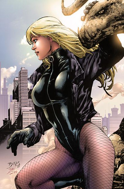774258-black_canary_by_dinei1