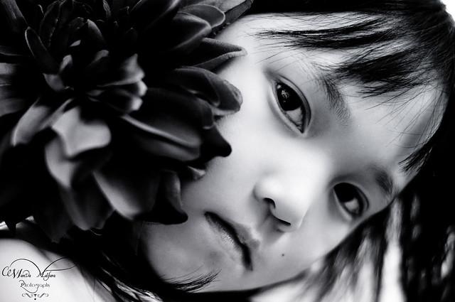 Flowers 004-2 blog