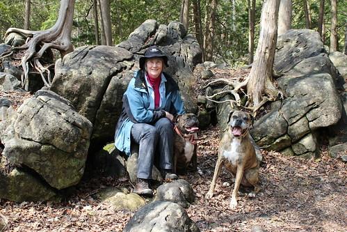 Jones Falls Mini-hike - Rest Stop