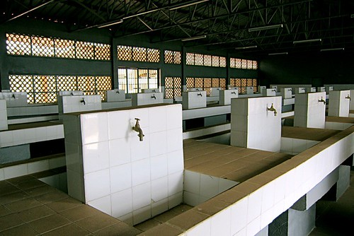 Fish processing/cleaning room