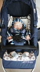 sleeping in the brandnew stroller