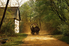 back in time (AlicePopkorn) Tags: light horses sun wagon landscape spring time rays dust timeless teutoburgerwald lippe ruralscene naturepoetry alicepopkorn absolutegoldenmasterpiece